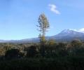 20121023-0908-kilimanjaro1